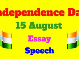 15 august essay in gujarati
